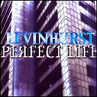Levinhurst - Perfect Life