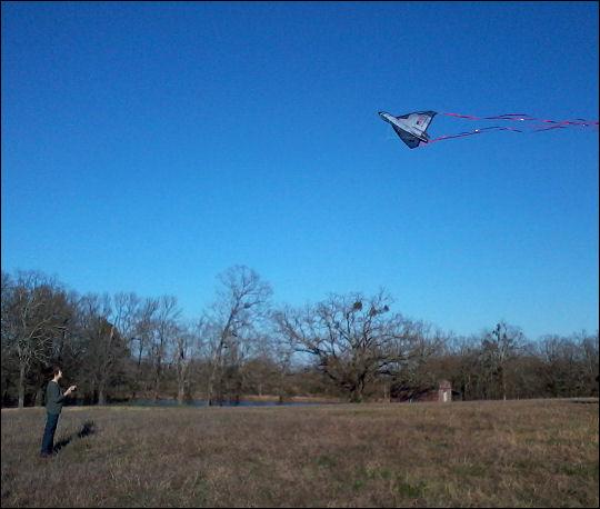 Little E flies a kite