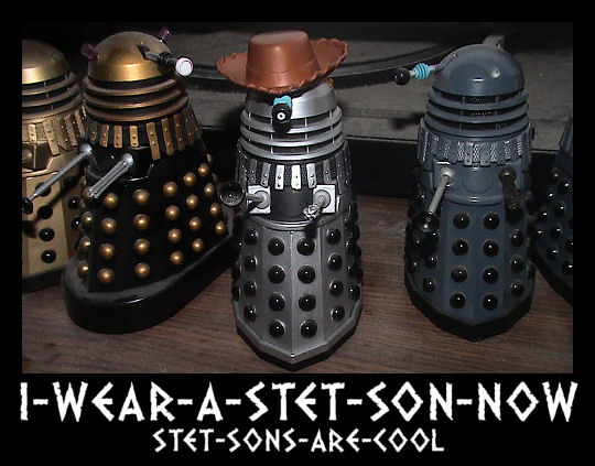 I-WEAR-A-STET-SON-NOW-STET-SONS-ARE-COOL