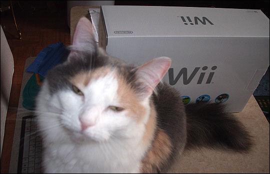 Olivia vs. the Wii